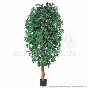 Umělý strom Fíkovník drobnolistý 180 cm