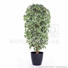 Umělý strom Fíkus Exotica 180 cm