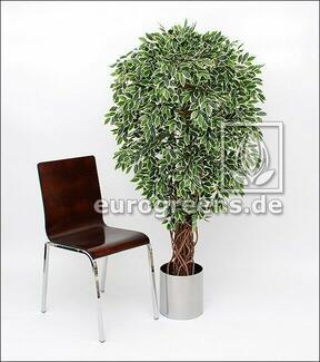 Umělý strom Fíkus Liane 150 cm