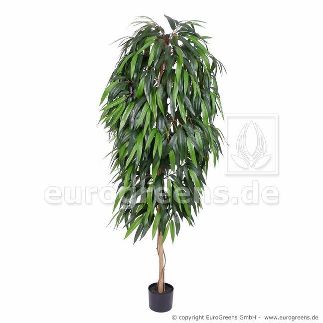 Umělý strom Fíkus longifolia 160 cm