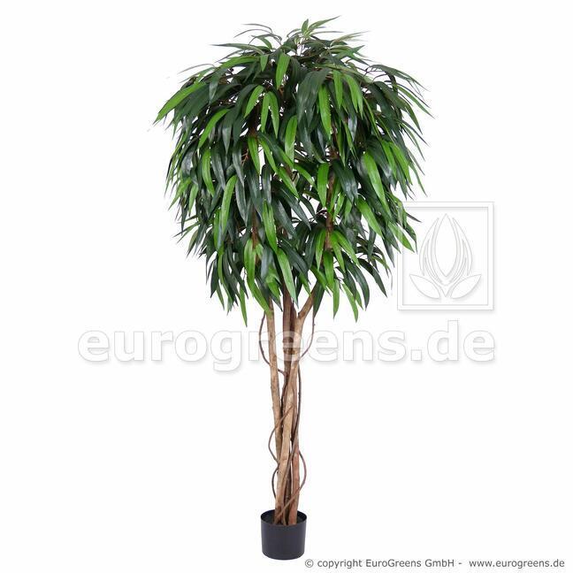 Umělý strom Fíkus longifolia 170 cm