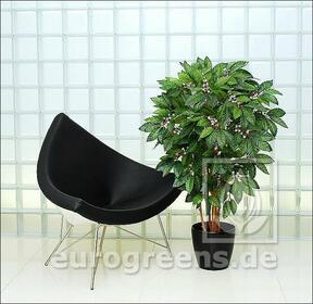 Umělý strom Kávovník 210 cm