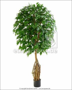 Umělý strom mangrovový Fikus 170 cm