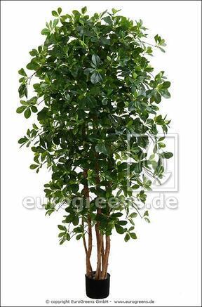 Umělý strom orientální Fikus 190 cm