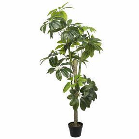 Umělý strom šeflery 155 cm