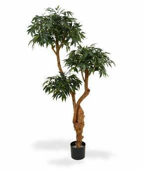 Umělý strom Shirakashi 160 cm