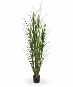 Umělý svazek trávy Rákos obecný v květináči 165 cm