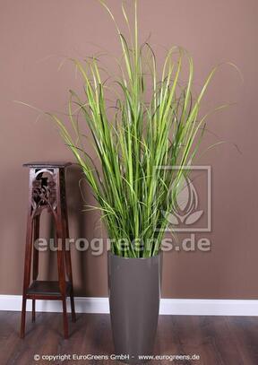 Umělý svazek trávy Rákos obecný v květináči 170 cm