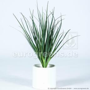 Umělý zapichovací svazek trávy Rákos obecný 55 cm