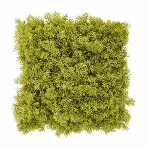 Umělý zelený mechový panel - 25x25 cm